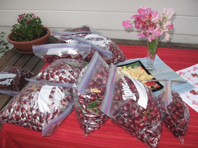 Cherry party 012
