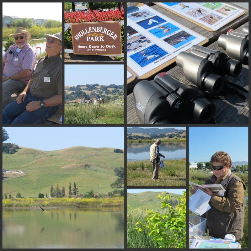 Shollenberger Wetlands Science Program
