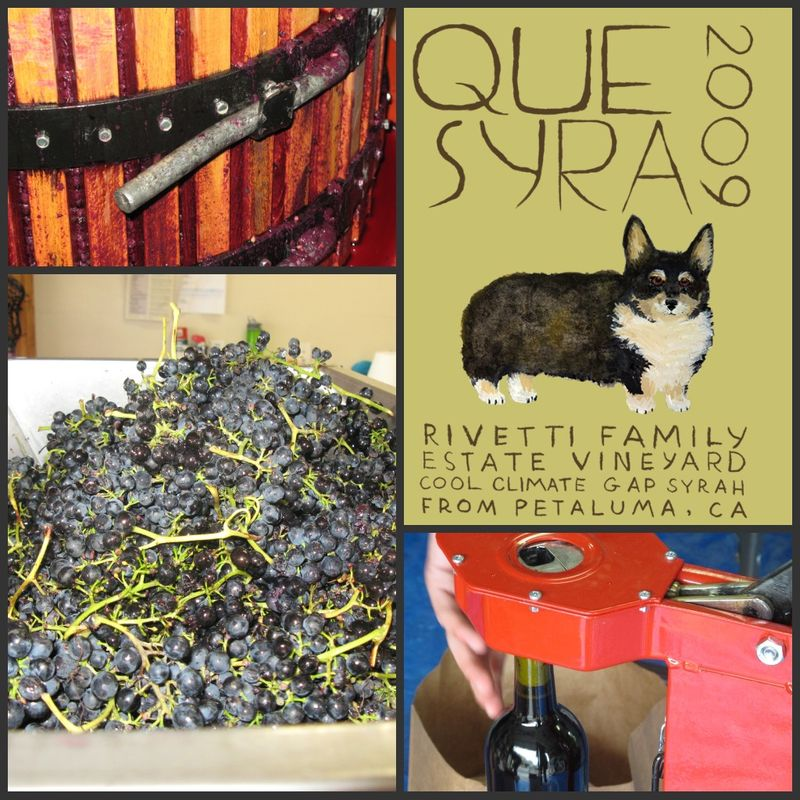 Que syrah 2009 collage