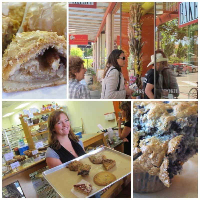 Bovine Bakery Taste of Petaluma collage
