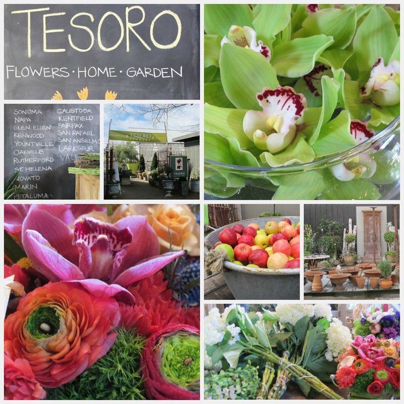 Tesoro collage