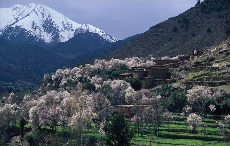 Mountain Village - MT