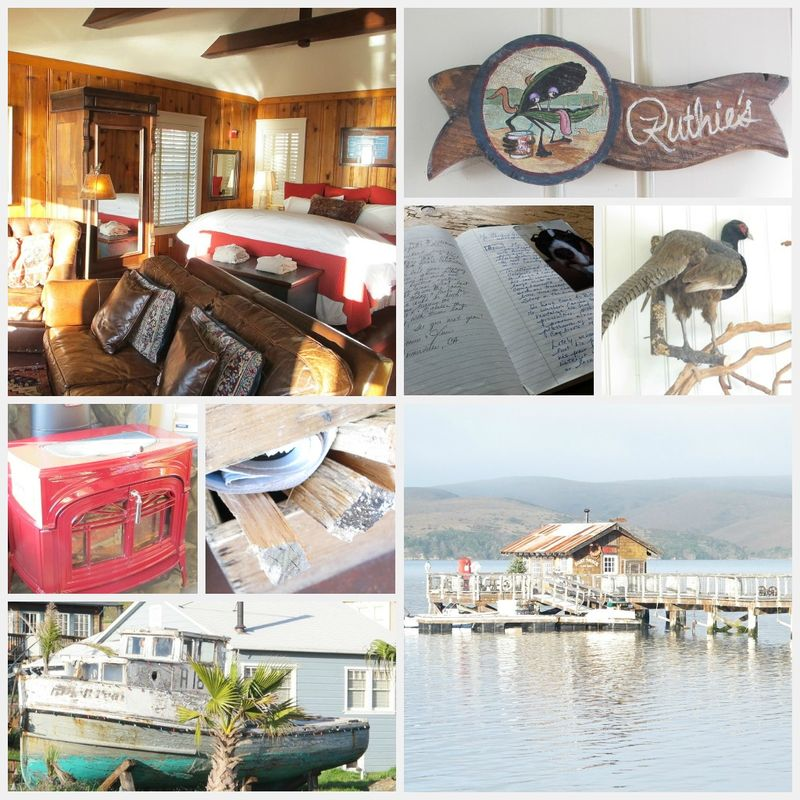 Nick's Cove 2012 collage