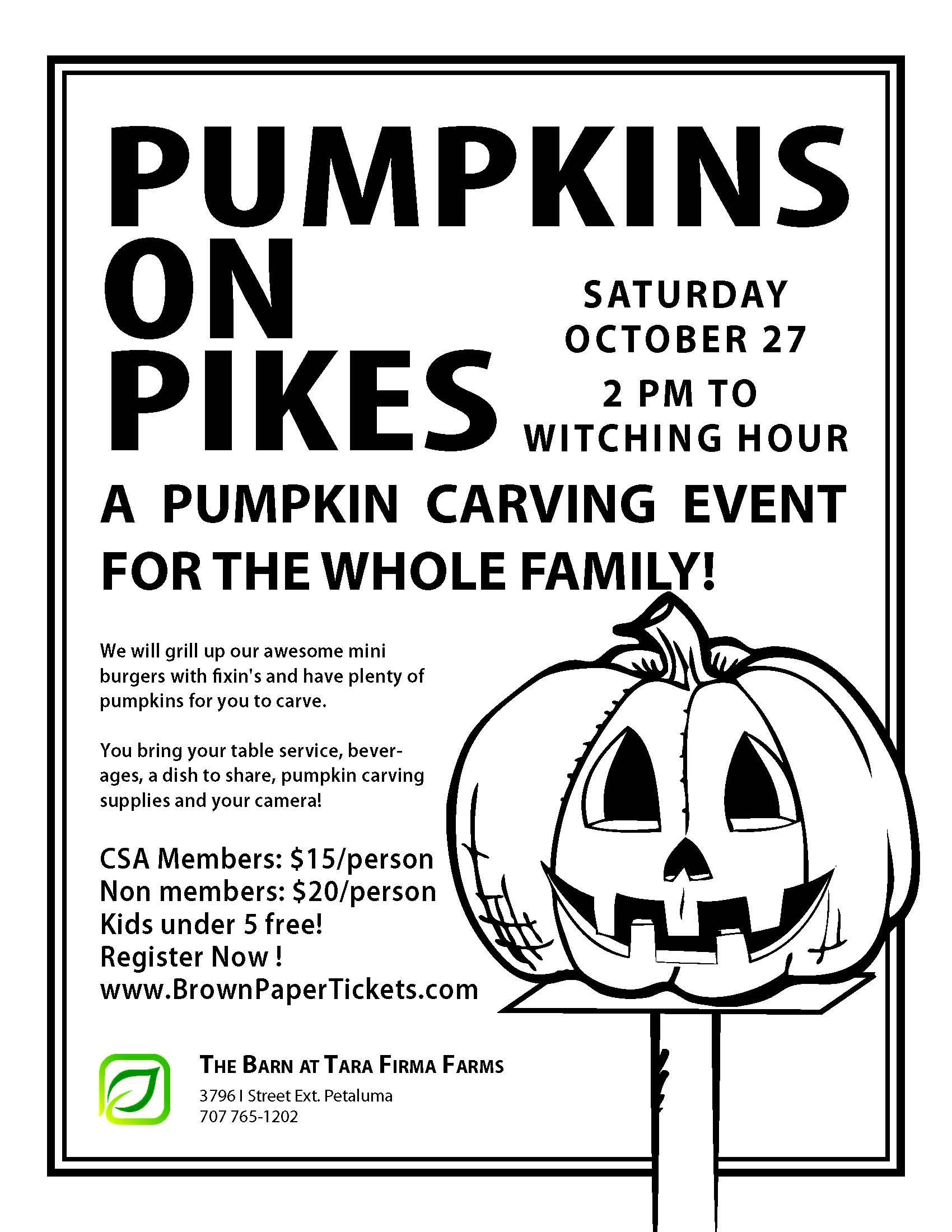 Tara Firma Farms Pumpkins on Pikes - Top Pick for Fall