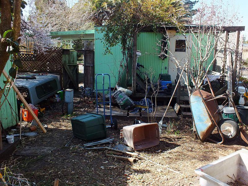Yard DSCF1264