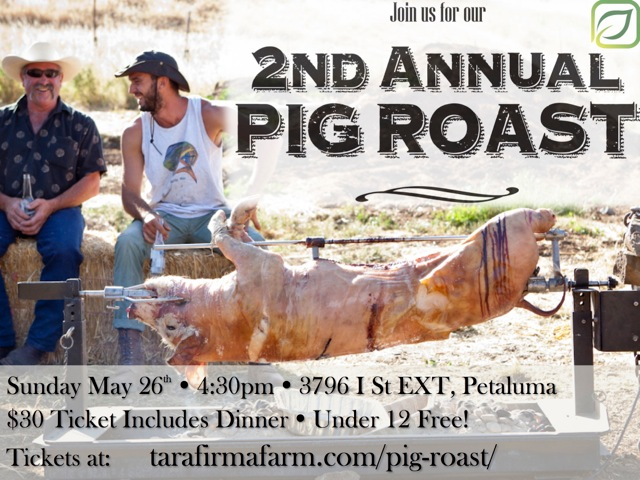 Pig Roast Flyer copy