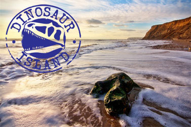 Fossil-tour-box