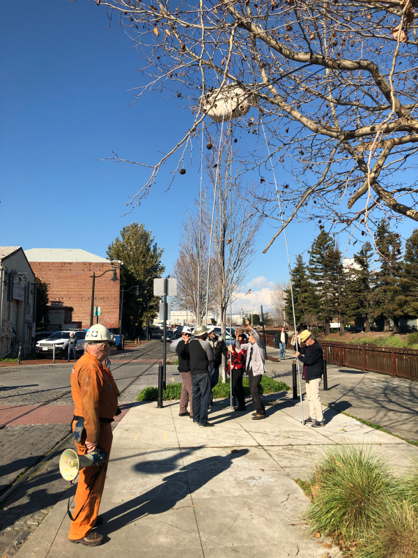 "story pole event — ""a fine balance"" for petaluma's first public art"