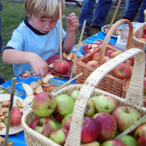 Home_kids_apples-300x300
