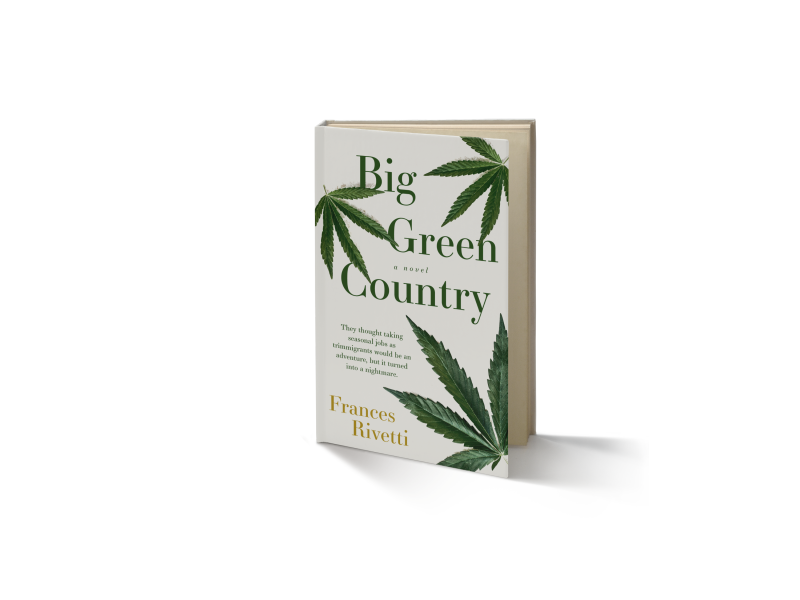 BigGreenCountry_cover_3DMockup