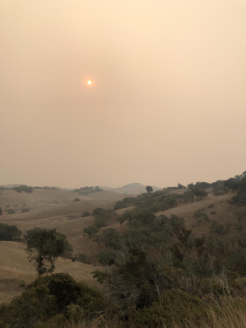 Petaluma Hills Wildfire Smoke 2020